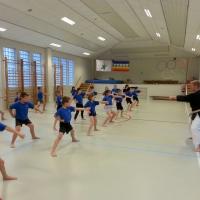 Mei 2016 Aiki-Jitsu Kobudo for kids